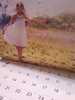 ビラボンカレンダー201401