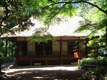 蘆花の家2