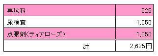 ユキ 20100710診療明細書