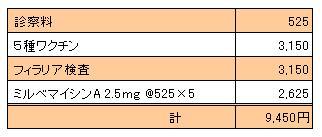 凛 20100711診療明細書
