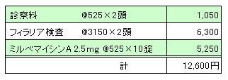ユキ&MARIN 2010.07.17診療明細書