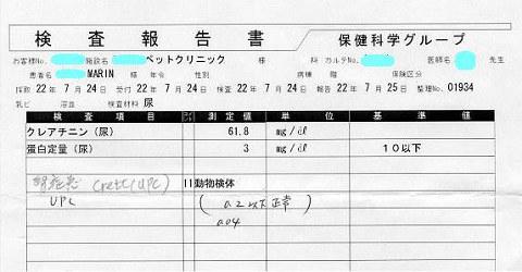 MARIN 検査報告書20100724