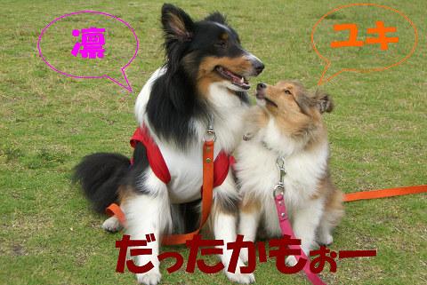 2007.06.10 凛&ユキだったかもぉー