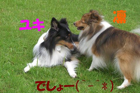 ユキ&凛・・・でしょー(^-^*)