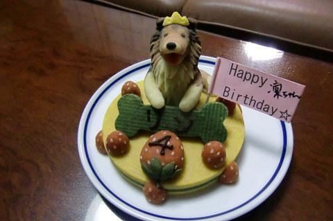 101217 いちごのショートケーキ+ワンコ