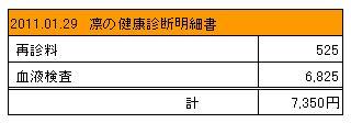 2011.01.29 凛の健康診断明細書
