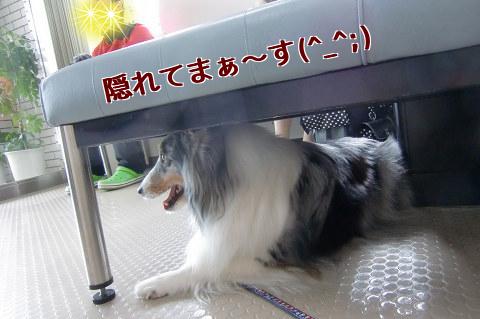 椅子の下に隠れる子