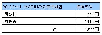 2012.04.14診療明細書【MARIN】