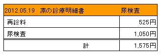 2012.05.19診療明細書【凛】