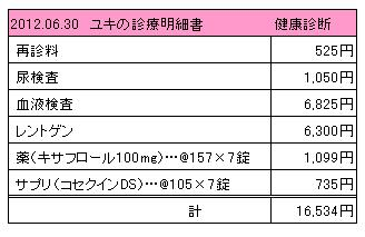 2012.06.30診療明細書【ユキ】