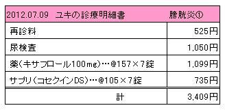 2012.07.09診療明細書【ユキ】