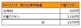 2012.07.15診療明細書【凛】
