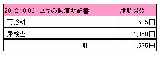 2012.10.06診療明細書【ユキ】