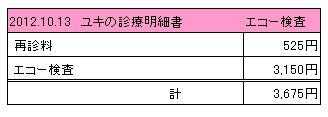2012.10.13診療明細書【ユキ】