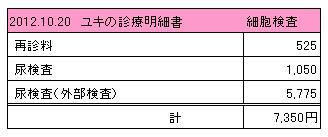 2012.10.20診療明細書【ユキ】