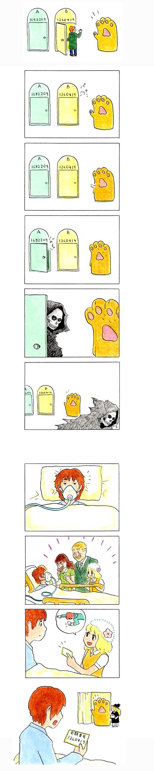 猫の手 247
