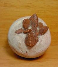 ゲンノウ石