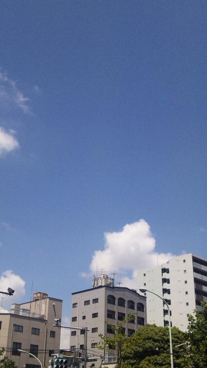 Blue Sky_20100804
