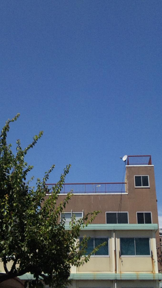 Blue Sky_20100807