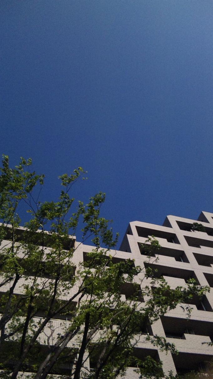 Blue Sky_20100824