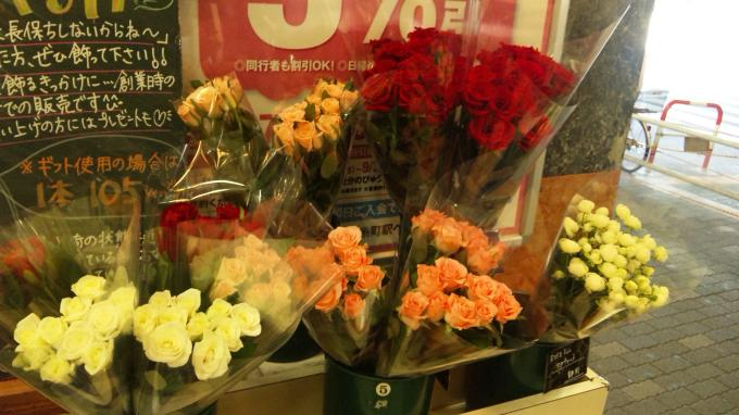 Roses_20100831