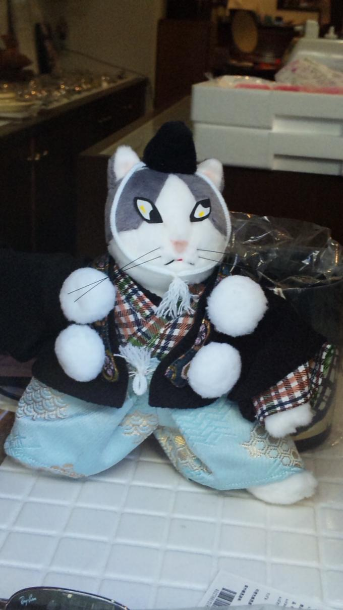 歌舞伎猫_20100904