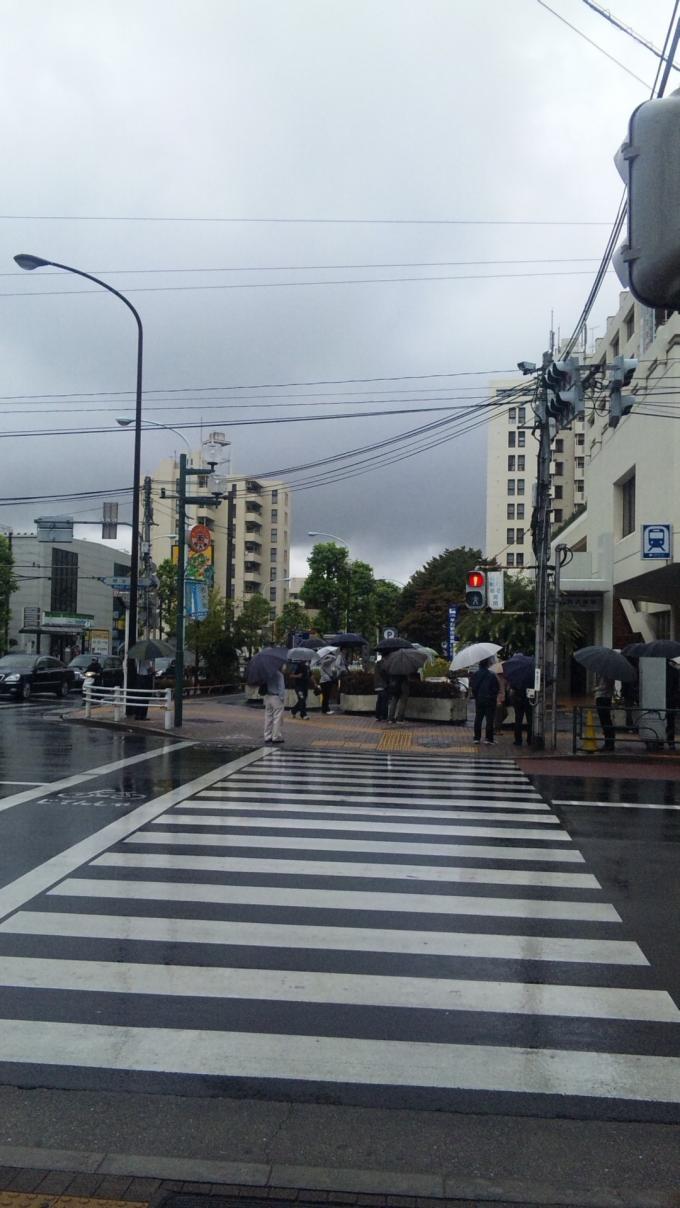 Rainnyday_20100916