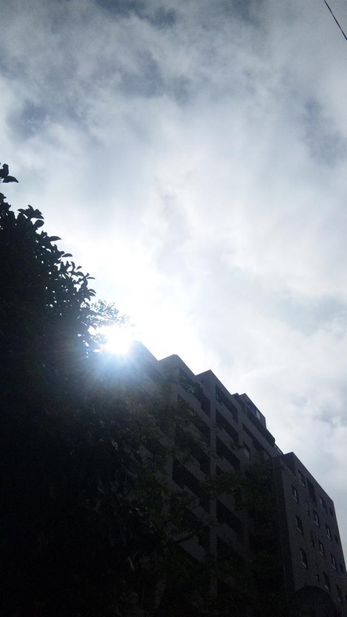 Sun Shine_20100917