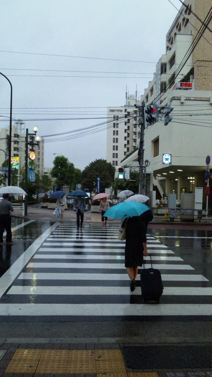 雨降り_20100923