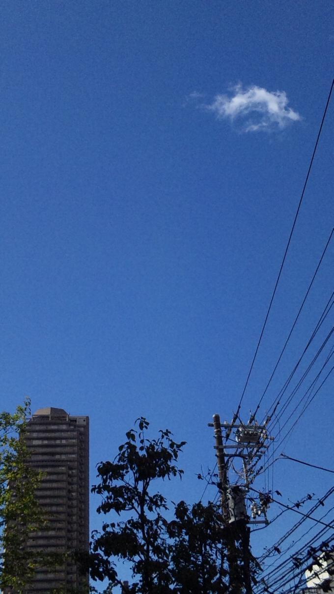 雲ひとつ_20100925