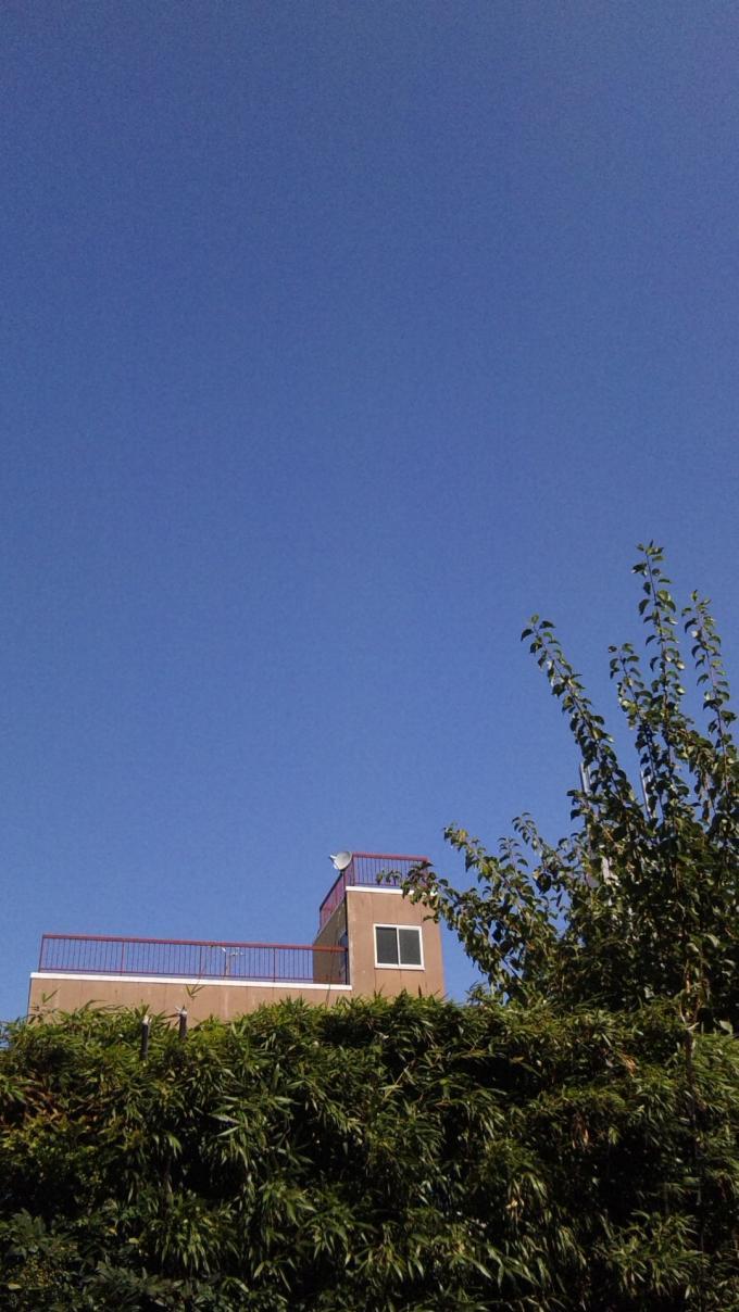 Blue Sky_20100926