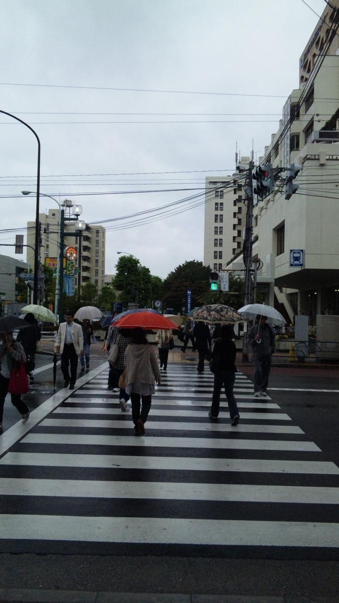雨降り_20100927