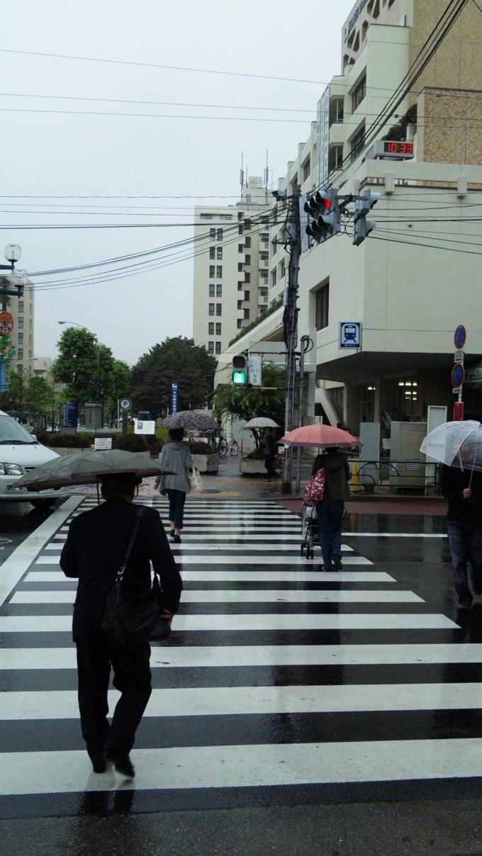 雨降り_20100928