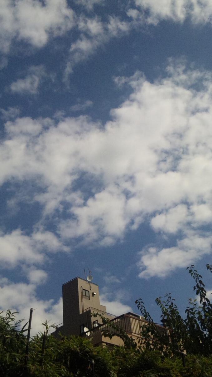 Blue Sky_20100929