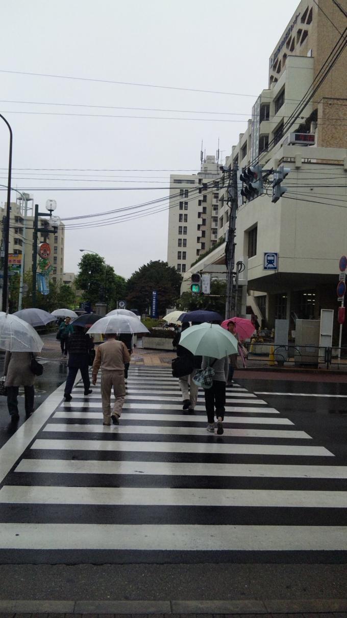 雨降り_20100930