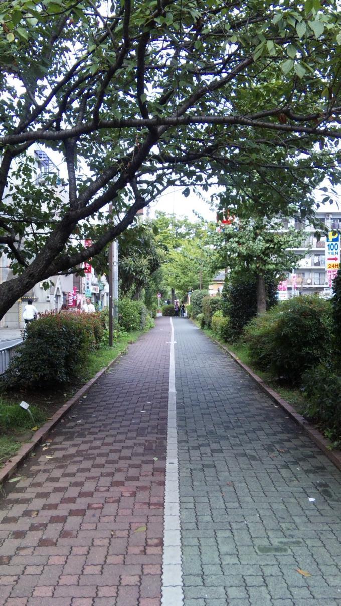 遊歩道_20101001