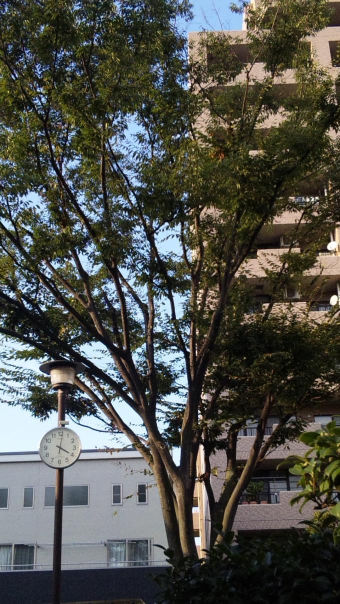 PM.4:00_20101002