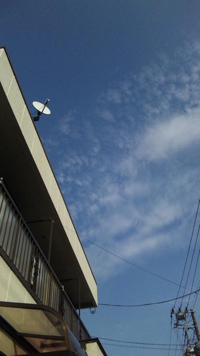 Blue Sky_20101005
