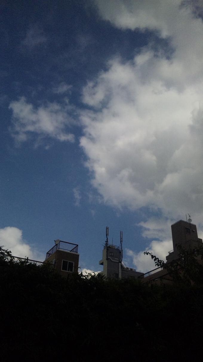 Blue Sky_20101008