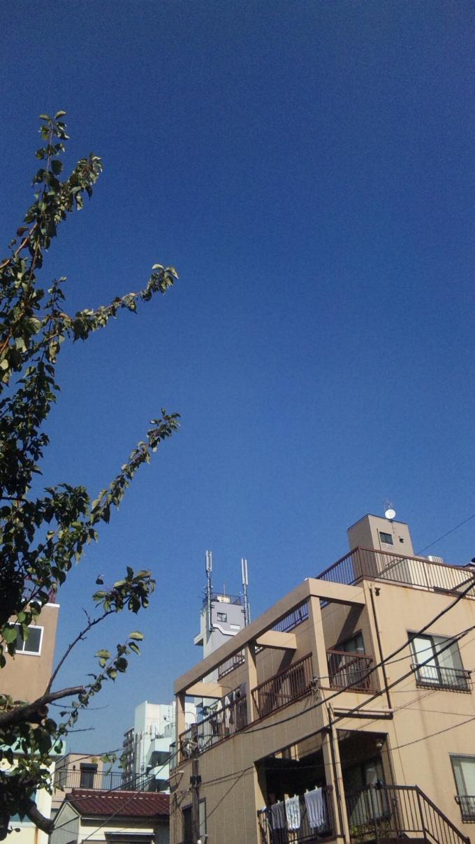 碧空_20101110