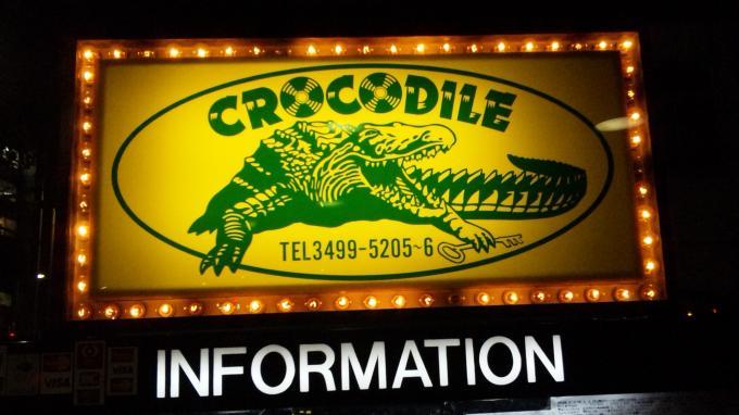 crocodile_20101110