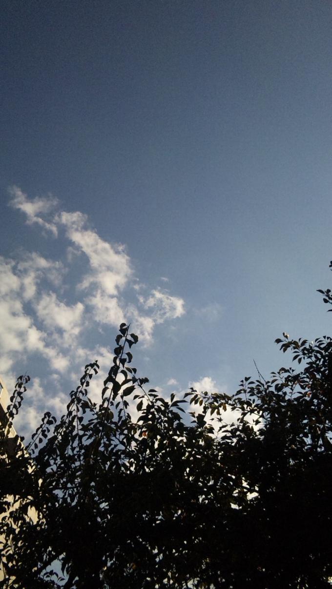 SKY_20101111