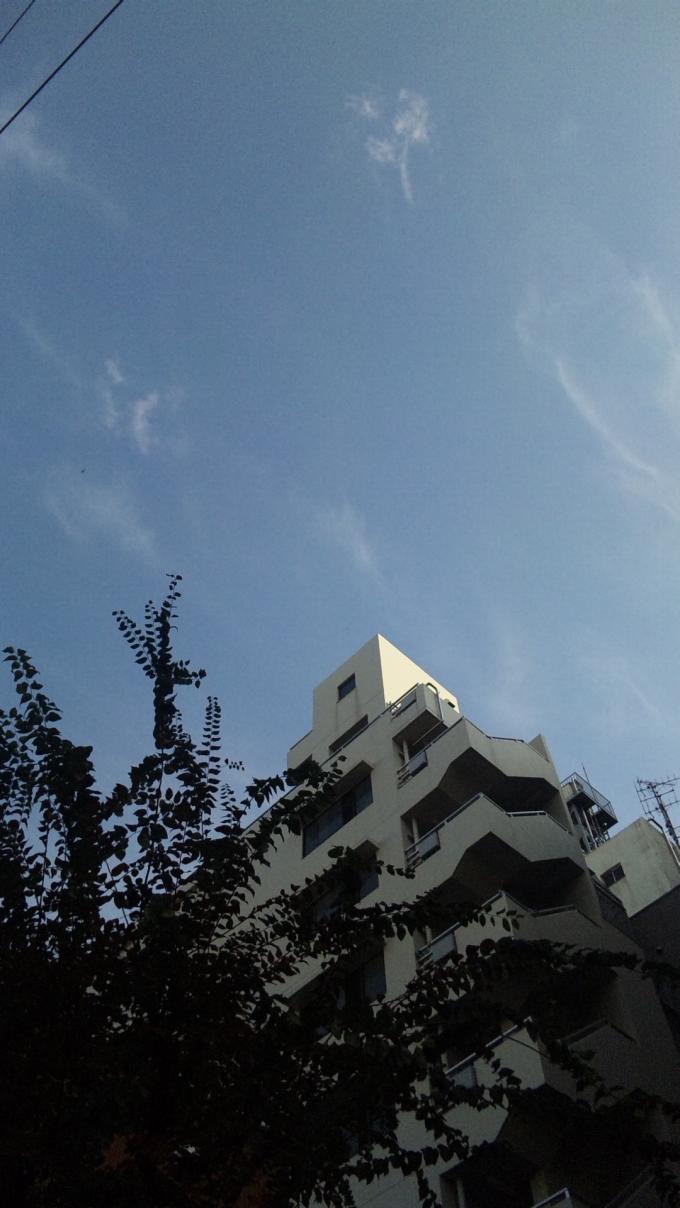 BLUE SKY_20101116