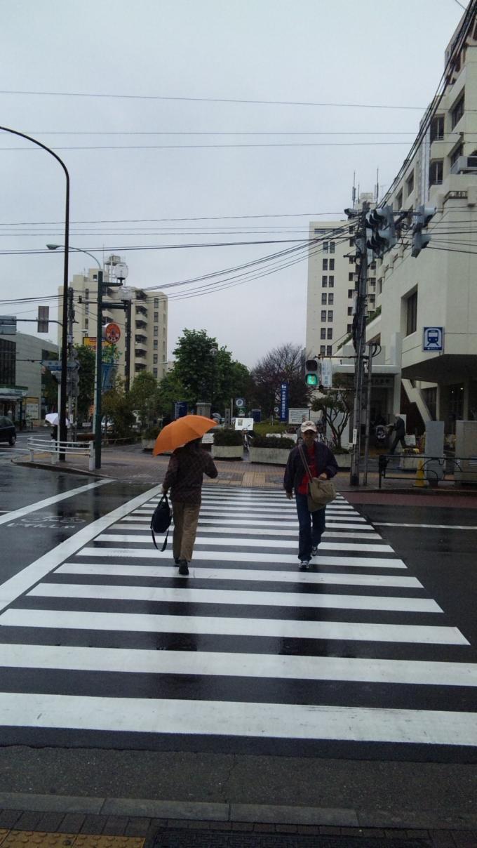 RAIN_20101117