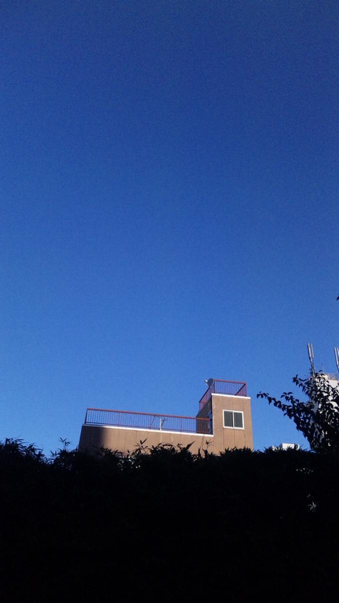 BLUE SKY_20101119