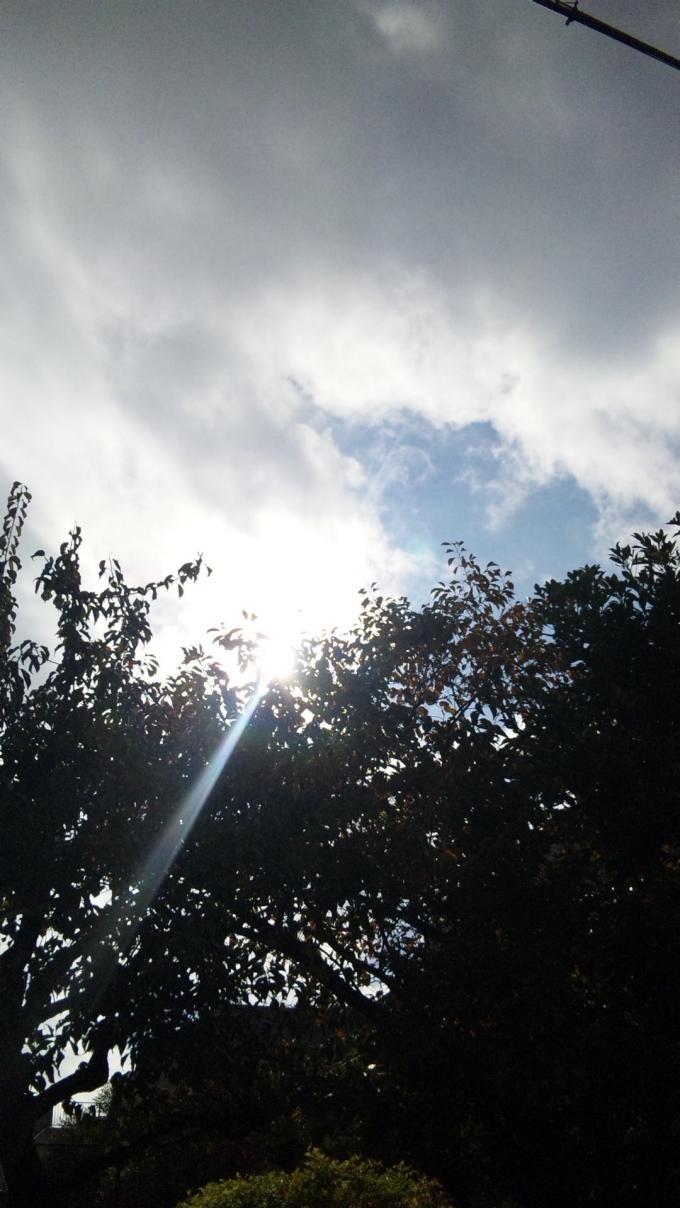 Sun_20101120