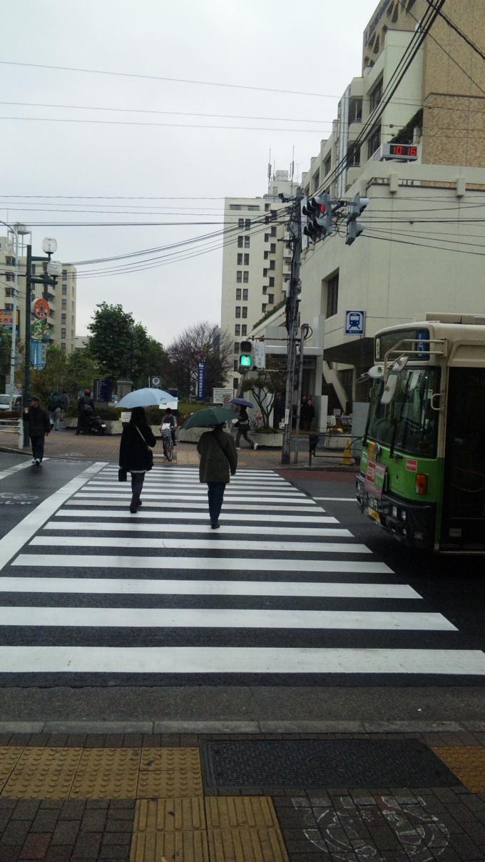 RAIN_20101122