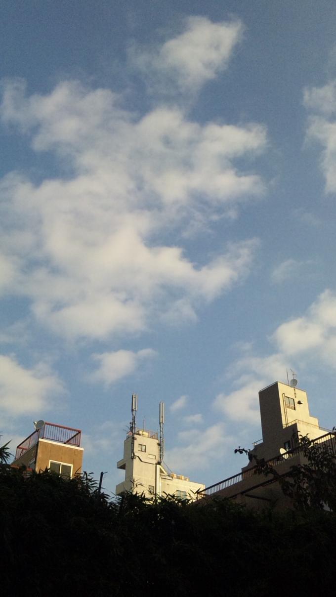 BLUE SKY_20101127