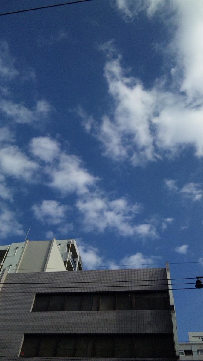 BLUE SKY_20101130