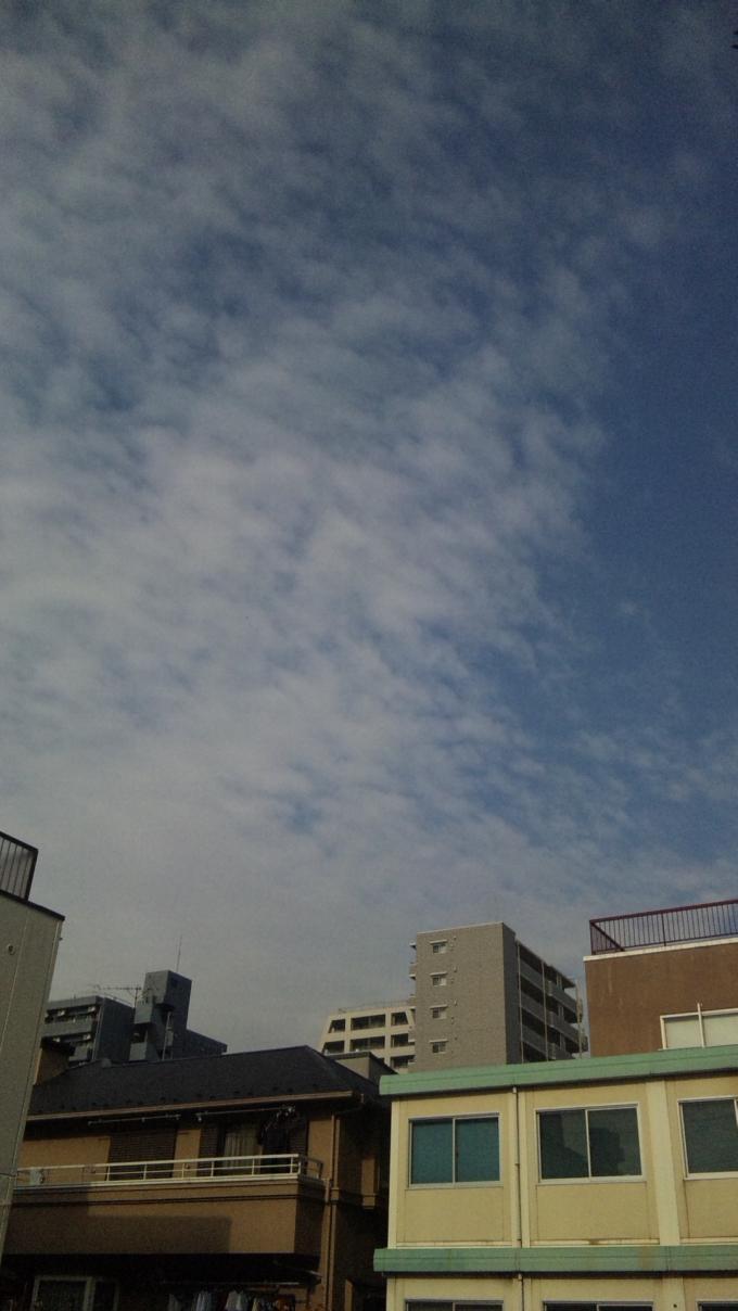 BLUE  SKY_20101202